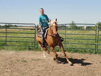 riding in the round pen