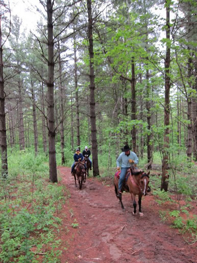 mn trail rides and horse boarding