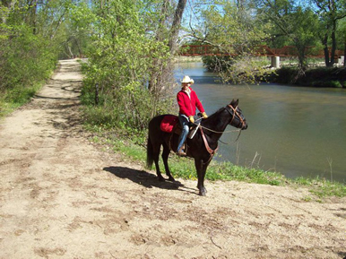 trail riding on horseback - MN Dakota Stables